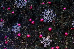 Lumières de Noël accrochant dans un arbre image libre de droits