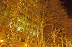 Lumières de Noël blanc dans Reston, la Virginie Photos stock