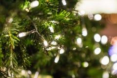 Lumières de Noël blanc de scintillement sur un arbre vert Photo libre de droits