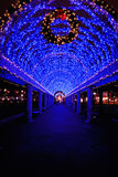 Lumières de Noël bleues à Boston Photographie stock