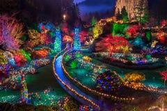 Lumières de Noël colorées de jardins de Butchart photographie stock libre de droits