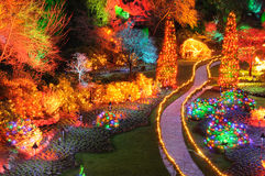 Lumières de Noël dans des jardins de butchart Image libre de droits