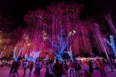 Lumières de Noël de jardins de triangle d'Ayala photographie stock