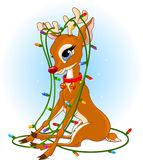 Lumières de Noël de Rudolph Images stock