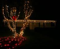 Lumières de Noël extérieures Photographie stock libre de droits