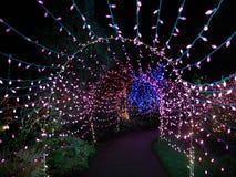 Lumières de Noël extérieures Photos stock