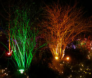 Lumières de Noël extérieures Image stock