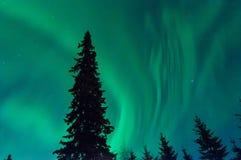 Lumières de Norrthern Photo libre de droits