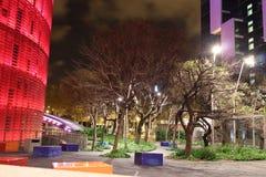 Lumières de parc de nuit Photographie stock libre de droits