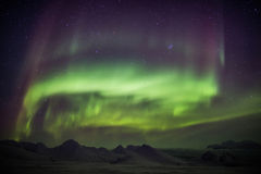 Lumières du nord à travers le ciel arctique - le Spitzberg Image libre de droits