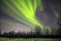Lumières du nord Image libre de droits