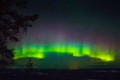 Lumières du nord en Finlande, Laponie photographie stock libre de droits