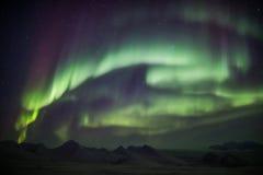 Lumières du nord sur le ciel arctique - le Svalbard Images libres de droits