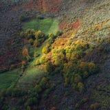 Lumières et ombres sur les forêts de flanc de coteau Images libres de droits