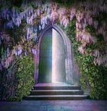 Lumières fantastiques d'une porte ouverte Image stock