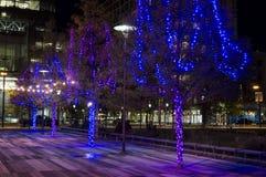 Lumières le long de boulevard de port maritime Photo stock