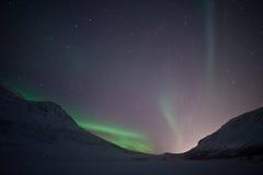 Lumières nordiques en dehors de Tromso Photo libre de droits