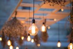 Lumières rustiques de jardin d'ampoule Images libres de droits