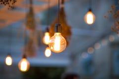 Lumières rustiques de jardin d'ampoule Photographie stock