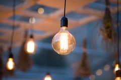 Lumières rustiques de jardin d'ampoule Image libre de droits
