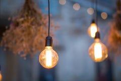 Lumières rustiques de jardin d'ampoule Photographie stock libre de droits