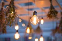 Lumières rustiques de jardin d'ampoule Photos stock