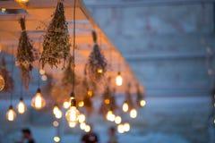 Lumières rustiques de jardin d'ampoule Image stock