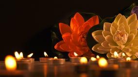 Lumi?re et fleurs romantiques de bougie banque de vidéos