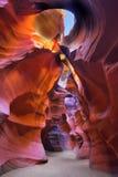 Luminescencia solar. Foto de archivo libre de regalías