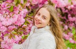 Lumineux et vibrant Doux et tendre E Le rose est mon favori Peu fille appr?cient le ressort Fleurs de rose d'enfant photos stock