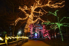 Luminous display at Lincoln Park Zoo in Chicago. Chicago, USA, 31st December 2016 : To walk through the luminous display at New Year's Eve at Lincoln Park Zoo Royalty Free Stock Images