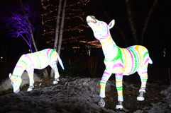 Luminous display at Lincoln park Zoo. Chicago, USA, 31st December 2016 : To walk through the luminous display at New Year's Eve at Lincoln Park Zoo in Chicago Stock Images