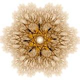 Luminous flake. Shining golden flake - fractal illustration stock illustration