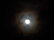 Luminous full moon Stock Photos