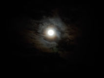 Luminous full moon Stock Image