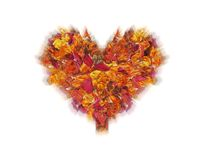 Luminous heart from the lobes Royalty Free Stock Images