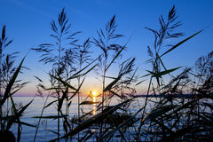 Lumière de coucher du soleil Image stock