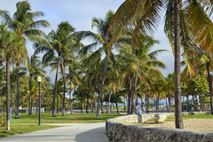 Lummus Park South Beach, Miami. Peaceful scene of the father and son walking in Lummus Park on South Beach, Florida in sunny winter day Royalty Free Stock Photos