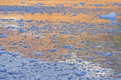 Lump of ice. Sunset time to arctic ocean with lump of ice royalty free stock photography