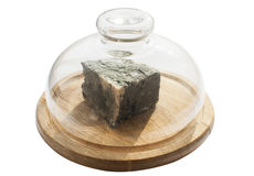 Lump of moldy white cheese. Under glass lid on wooden tray  on white background Royalty Free Stock Photo