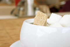 Lump sugar. White and brown lump sugar Stock Images