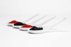 Lumpfish Caviar in Ceramic Spoon. Over white background Stock Images