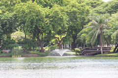 Lumphini Park. Stock Photo