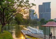 Lumphini park, Tajlandia Fotografia Royalty Free