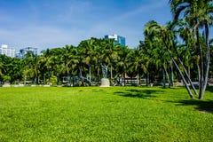 Lumpine park. The field in lumpine park, bangkok Stock Images