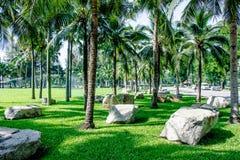 Lumpine park. The field in lumpine park, bangkok Stock Photography