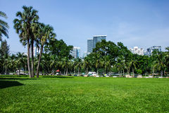 Lumpine park. Lawn in Lumbine park bangkok Royalty Free Stock Photos