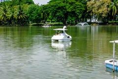 Lumpine park. Pool Lumpene Park, in Bangkok Royalty Free Stock Photos
