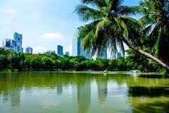 Lumpine park. Swimming Lumpine Park in Bangkok Stock Photos