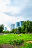 Lumpini公园,曼谷看法  免版税库存照片